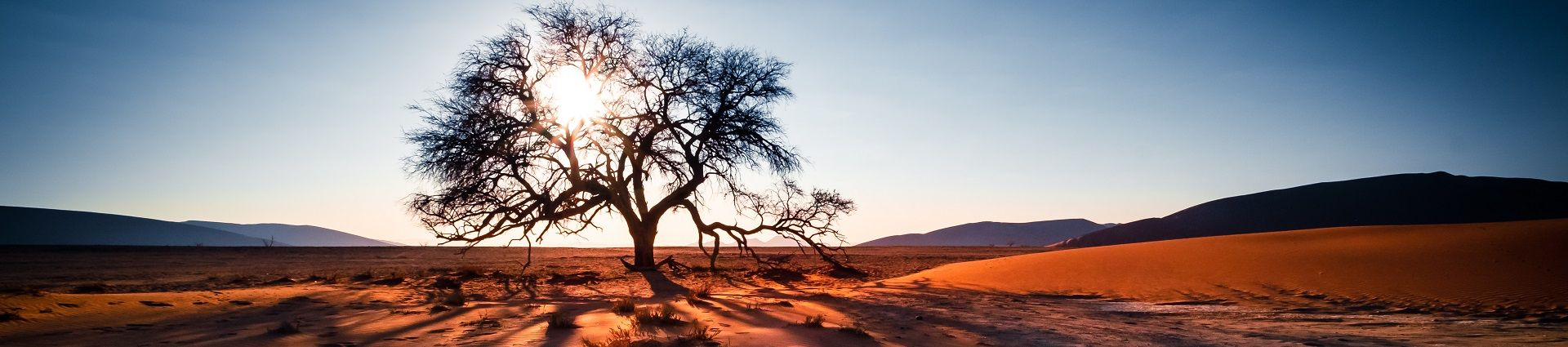 Photography trips in Southern Africa